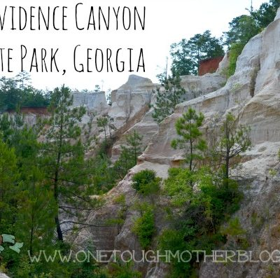 Travel in Georgia – Providence Canyon