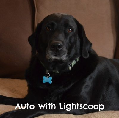 Improve Your Photography With Lightscoop Review + Giveaway