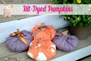 Rit-Dyed Pumpkins