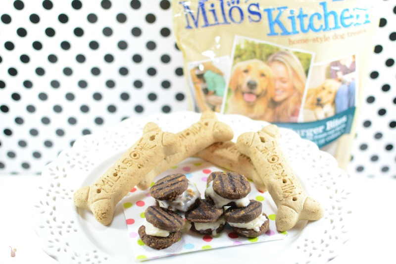 Doggy Ice Cream Sandwiches Feature