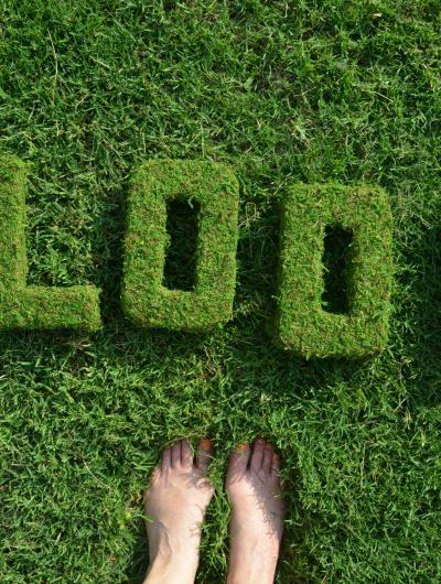 BLOOM Moss Decor