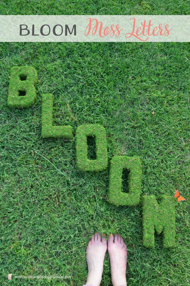 BLOOM Moss Decor