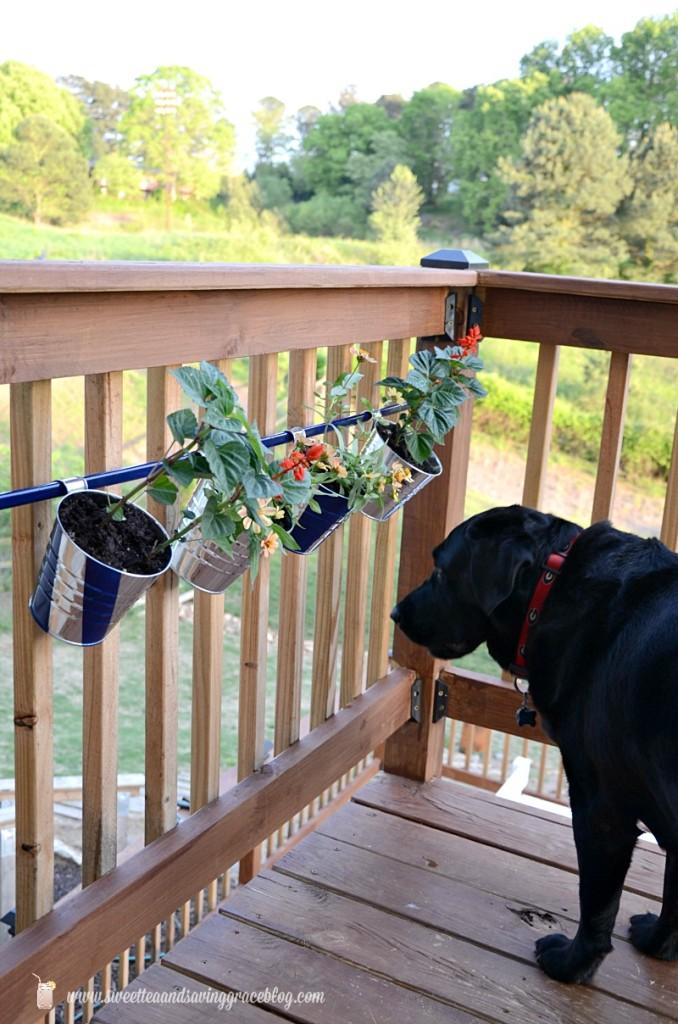 DIY Deck Hanging Pot Rod     Sweet Tea & Saving Grace
