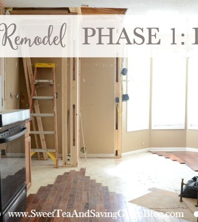Kitchen Remodel Phase 1: Demo