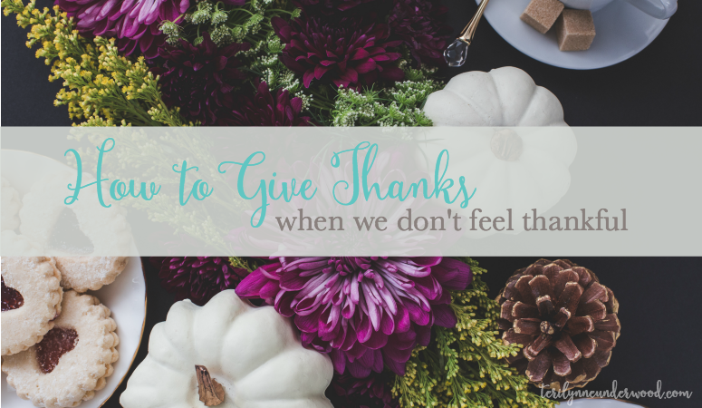 How do we learn to give thanks even when we don't feel thankful? Three lessons from Job to help us refocus on gratitude, no matter our circumstances.