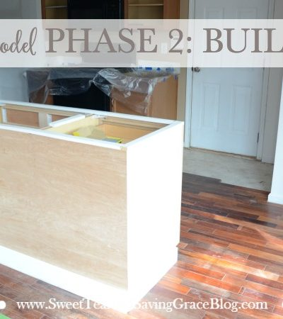 Kitchen Remodel Phase 2: The Build-Out