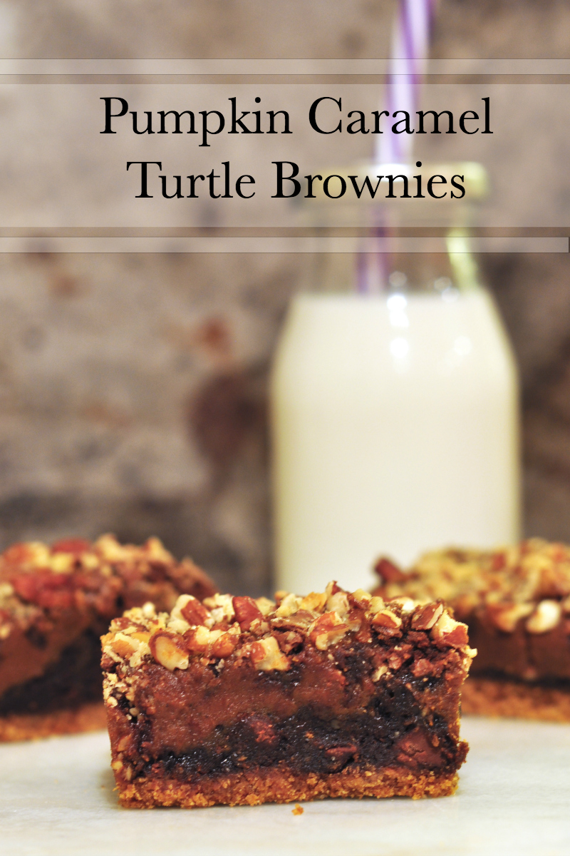 Easy semi-homemade pumpkin caramel turtle brownies - This is a bar with a traditional graham cracker crust, topped with a rich, decadent, fudgy brownie, heavily swirled with caramel made with pumpkin puree and pumpkin pie spice and smothered in crushed pecans.