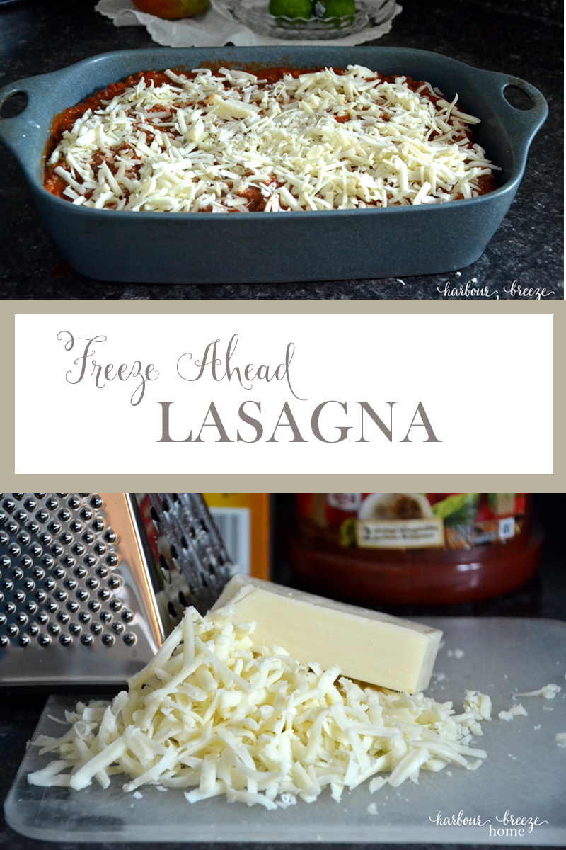 FREEZE AHEAD LASAGNA* Free up valuable time during this busy holiday season by tucking some meals into your freezer.This freeze ahead lasagna is simple to prepare and a favorite!