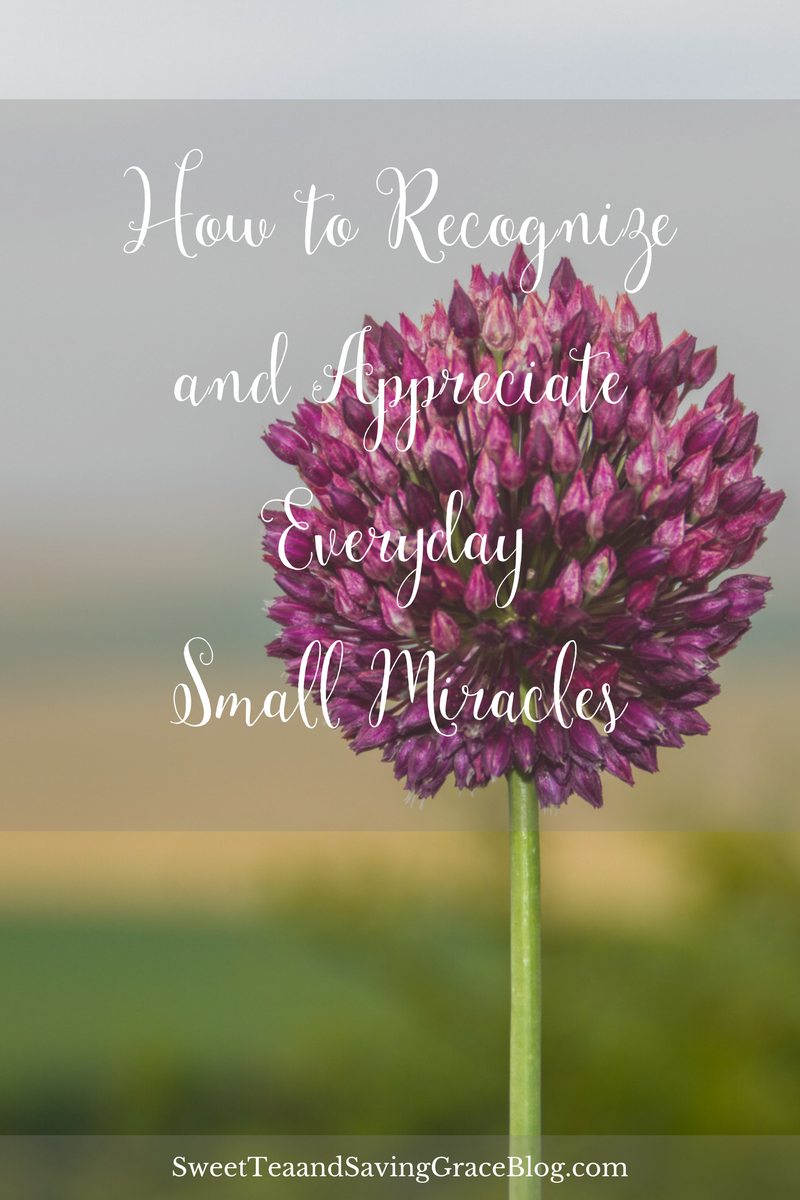 Paying attention to the everyday small miracles happening all around us is vital to our wellbeing.