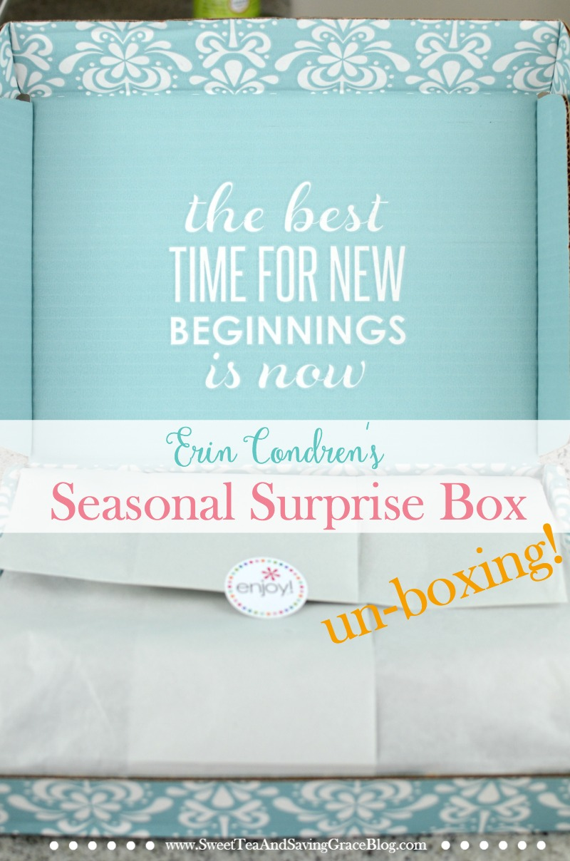 Erin Condren just released their first Seasonal Surprise Box and it's amazing! Check out all the planner accessories and goodness inside in this fun unboxing video!