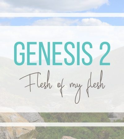 Genesis 2: Flesh of my flesh