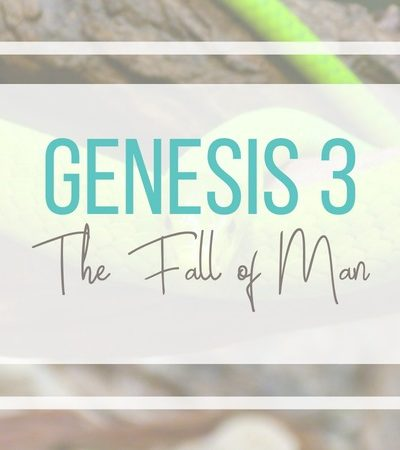 Genesis 3: The Fall of Man