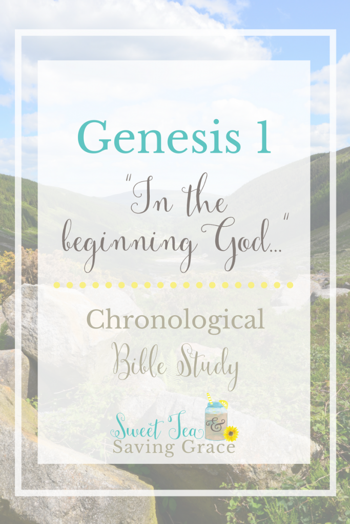 "As I begin my chronological study of the bible, I'm studying Genesis 1, the first six days of Creation. God created the heavens and the earth in six days. There are so many truths and insights in this first chapter of the bible, particularly in the first four words: ""In the beginning God..."""