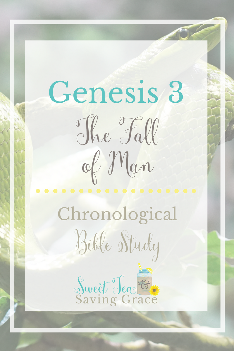 Genesis 3 covers the fall of man, the first sin, God's judgment on the serpent, Adam, and Eve. Eve's role changes because of sin, and Adam and Eve are cast out of the Garden of Eden.