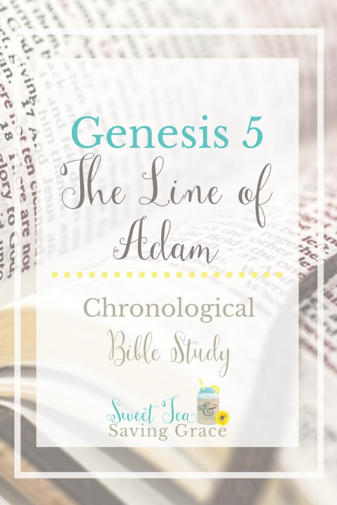 Genesis 5: The Line of Adam | Sweet Tea Ministry