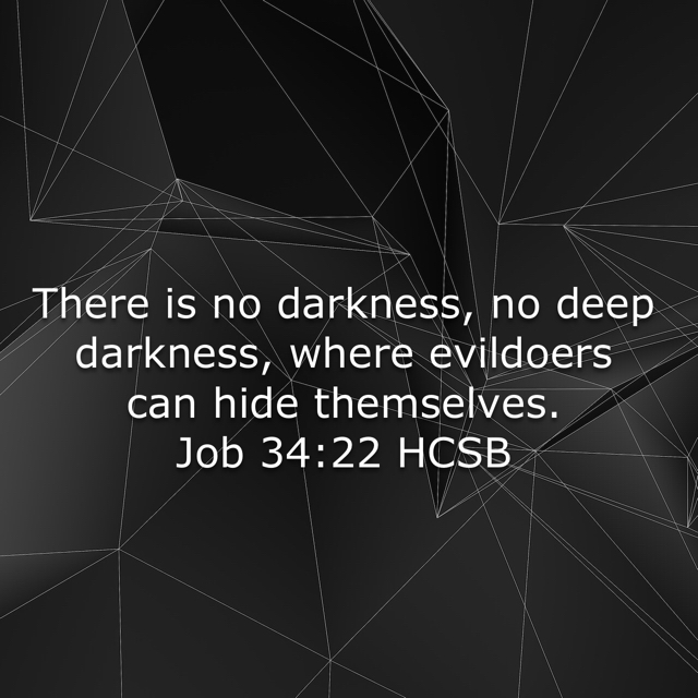 'There is no darkness, no deep darkness, where evildoers can hide themselves. ' Job 34:22 https://www.bible.com/bible/72/JOB.34.22