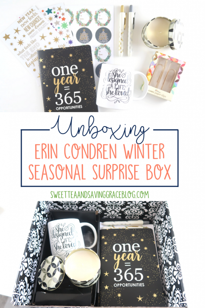 Check out the contents of the Erin Condren Winter Seasonal Surprise Box in this unboxing video!