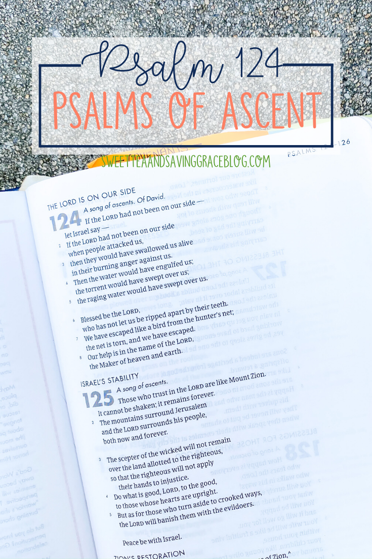 The Psalms of Ascent are a set of fifteen psalms that were traditionally sung as priests entered the temple, and Jews journeyed to the Holy Land to celebrate the Passover Festival. They offer hope, encouragement, and peace in a time of uncertainty. Today we will read and discuss Psalm 124, the fifth psalm in the psalms of ascents, and the second authored by King David.